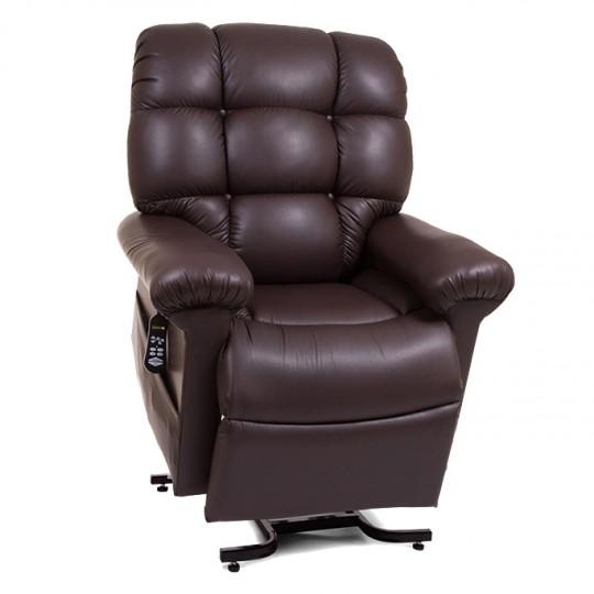 Dark Brown Golden Tech Cloud Infinite Position Lift Chair