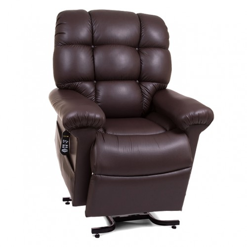 Dark Brown Golden Tech Cloud Infinite Position Lift Chair