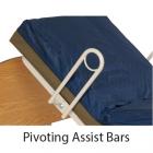 Pivoting Assist Bars